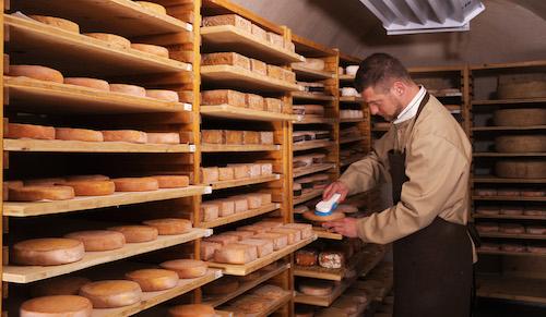Cheese artisan